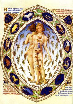 Frères Limbourg, Les Très Riches Heures du Duc de Berry, L'Homme Zodiacal/Anatomique