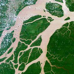 A delta in the Amazon River, Brazil