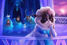 let it no - Frozen Grumpy Cat
