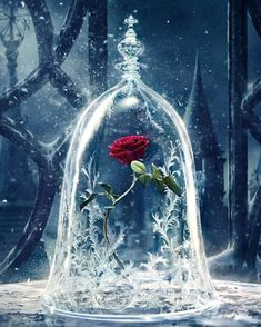 Beauty and the Beast is almost here! Get your devices ready with these enchanting phone, tablet, and computer Beauty and the Beast wallpapers. disney Add Some Magic To Your Devices With These Beauty and the Beast Wallpapers Art Disney, Disney Kunst, Disney Magic, Wallpaper Iphone Disney, Galaxy Wallpaper, Wallpaper Backgrounds, Trendy Wallpaper, Beauty And The Beast Wallpaper Iphone, Rose Wallpaper