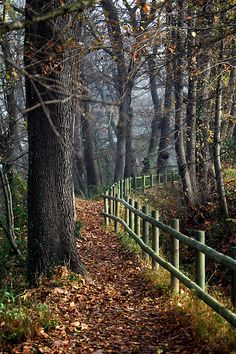 The Long and Winding Road by Fotourbana, via Flickr