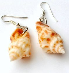 Find two shells on the beach and make little earrings with them! Via: http://beachblissliving.com/how-to-make-seashell-jewelry/