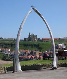 Whitby sharks jaw - WHAT?!
