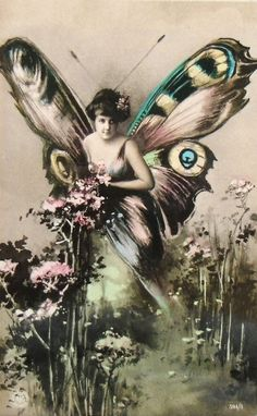 Hand Tinted Vintage Butterfly Postcard