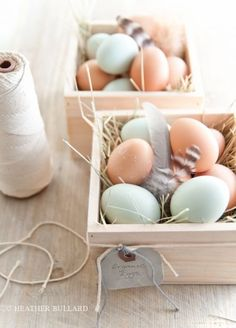Soft pastel easter baskets.