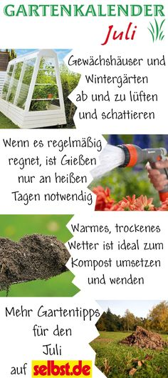 Garten Pflanzen Trockenen Regionen Tipps Sparen , 118 Besten Gartenkalender Erntekalender Deko Anleitung Bilder Auf