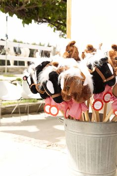 Pony Party  https://www.facebook.com/fiestasinfantilesmadrid