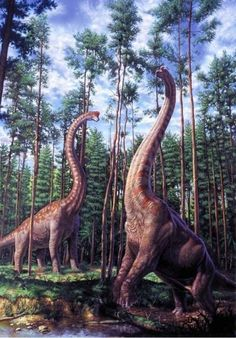 A Pair of Brachiosaurus altithorax by Mark Hallett