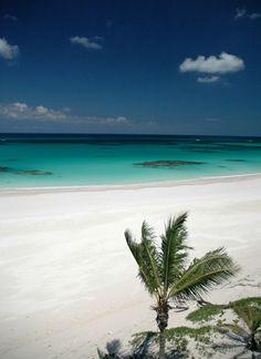 French Leave Beach (Eleuthera, Bahamas)