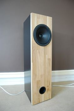 Clean looking full-range speaker.