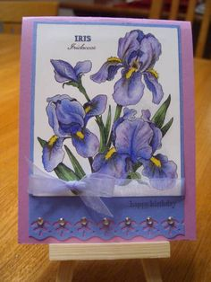 Birthday Iris