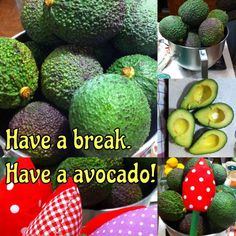 Sometimes we need a break. And then why not to go for avocados directly from Sicily! Sewing For Kids, Sicily, Italian Recipes, Birthday Gifts, Avocado, Etsy Seller, Etsy Shop, Fruit, Vegetables