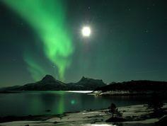 nordlys - Google-søk