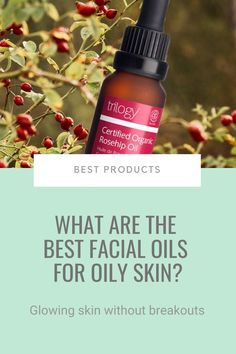 So, you have oily skin and want to go down the natural skincare route? Tough luck. The ugly truth is that the vast majority of natural skincare products are loaded with synthetic chemicals or irritating natural extracts. Yes, natural extracts can be irritating. If you're serious on going natural, you're left with oils. But having oily skin means you have to be sure the oil won't clog pores more. Here are my top picks... #oilyskin #facialoils Organic Rosehip Oil, Organic Oil, Organic Skin Care, Natural Skin Care, Going Natural, Natural Oils, Acne Prone Skin, Oily Skin, Best Skincare Products