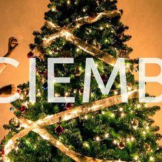 Ya comenzaste a planificar el 2018?     #holidays #diciembre #december #navidad #christmas #instagood #photooftheday