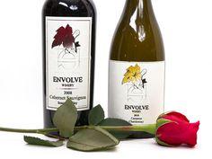 Does Ben the Bachelor's Wine Deserve a Rose?