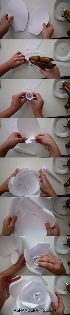 How to make a paper flower rose. Learn how to make different flowers for a paper flower backdrop!