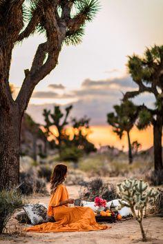 Desert Picnic | VivaLuxury