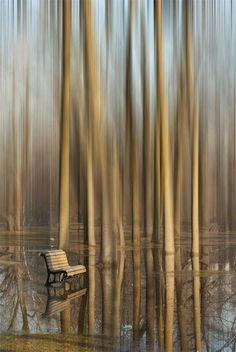 "alivetotellthetail: "" ""L'attente"" (The Wait) by Monique Laguë at a park on the Rivière des Mille Îles (River of the Thousand Islands), Terrebonne, Quebec, Canada. Beautiful World, Beautiful Places, Amazing Places, Amazing Photography, Art Photography, Foto One, Wow Photo, Le Moulin, Belle Photo"
