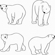 Bear Template, Templates Printable Free, Printables, Crafts Fir Kids, Polar Bear Drawing, Bear Stencil, Coloring Books, Coloring Pages, Bear Clipart