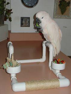 Home & Garden Bird Supplies Buy Cheap Rattan-weaving Five-star Bids Cage House Pet Bites Parrot Bird Climb Toys Swing To Reduce Body Weight And Prolong Life