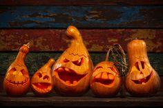 So schön ist der Herbst - 6 Ideen zum Nachmachen