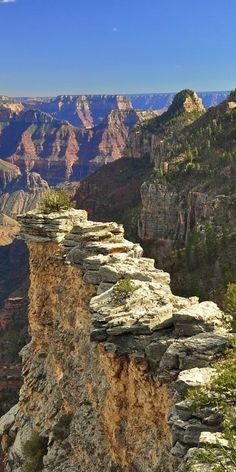 Grand Canyon in Arizona | Larry Miller Scottsdale