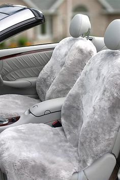 Covering Your Vehicles Seats Prolongs Their Lifespan Protecting Them From Pet Hair Spills And F