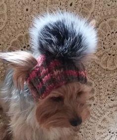 pet hats/ Cap for girl dogs/winter dog от LyudmilaHandmade на Etsy