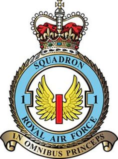 Royal Air Force, Armed Forces, Wwii, Crests, Commonwealth, Wall Art, Badges, Flags, Empire