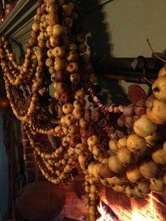 Dried crabapples Walker Homestead photo