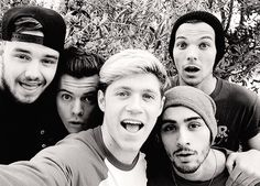 One Direction are a band of rich young men, that much is indisputable. In 2013 reports suggested that Harry Styles, Liam Payne, Louis Tomlinson, Niall Horan and Zayn Malik were worth around mil… One Direction 2014, One Direction Selfie, Grupo One Direction, One Direction Group, Members Of One Direction, One Direction Pictures, One Direction Fandom, Direction Quotes, Midnight Memories