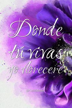"""Donde tú vivas yo floreceré"". @candidman #Frases #Amor"