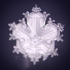 Masaru Emoto – Le Message de l'Eau [Version pour Enfants] Masaru Emoto Water, Hidden Messages In Water, Glass Bead Game, Fourth Phase, Water Images, Look At You, Feeling Great, Sacred Geometry, How To Fall Asleep
