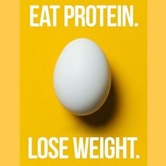 Eat Protein. Lose Weight.