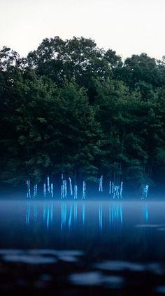 Landscape Light Installation ~ Barry Underwood