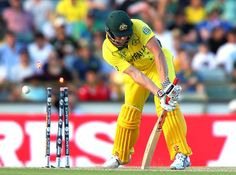 James Faulkner is bowled by Hamid Hassan.Australia vs Afghanistan, Match, Pool A James Faulkner, Icc Cricket, Cricket World Cup, Afghanistan, Australia, Baseball Cards, Sports, Photos, Baby