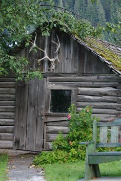 Trapper's Cabin at the Museum