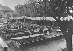 some orphans tend a local garden Janusz Korczak http://www.HolocaustResearchProject.org