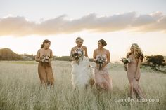 Bride and her bridesmaids | Field / outdoors | Wedding photography | Danielle Capito Photography