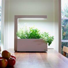 Herbie est un mini-potager hydroponique d'intérieur. Équipé d'une lampe de croissance et d'un système d'arrosage automatique il permettra à vos plantes de gran