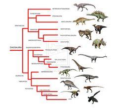 evolution species - Αναζήτηση Google
