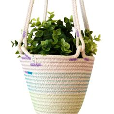 1000 images about corded baskets amp bowls on pinterest