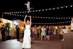 """""""Brides Throwing Cats"""" Is The Wedding Tumblr You Didn't Know You Needed  @Shelby Hunt"""