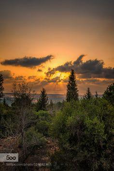 Way to the sundown by kingrazz12  500px amazing beautiful city clouds d800e green jungle landscape landscapes light lovely misty mood