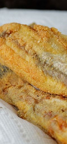 Southern Fried Catfish _ is an iconic Southern fish recipe. Made of a few simple ingredients, fried catfish makes a family favorite tradition!