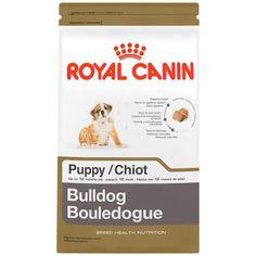 1bb49e8921c74f0f51f8a279d0085a9e--bulldog-puppies-royals