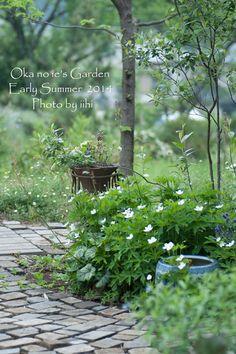 丘の家_3年目の初夏の庭♪ | いいひブログ - いいひ住まいの設計舎