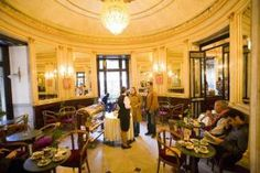 cafe gambrinus by jacqueline