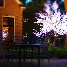 Wonderful LED Trees in different sizes and collours. You can place it in your Garden or inside the house or showroom.